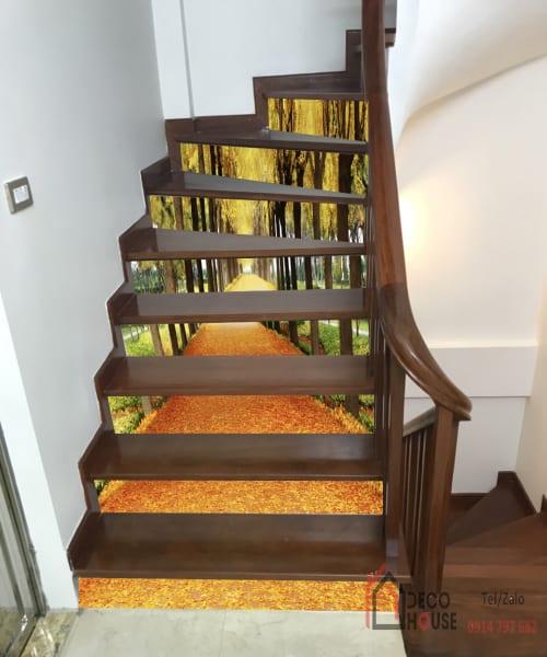 Tranh kính 3d ốp bậc cầu thang uốn lượn